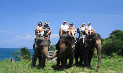 elephant7_k2